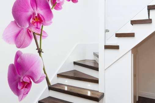 Фототапет орхидея на вито стълбище